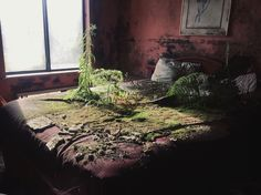 "dxcomposing: "" I snuck into an abandoned hotel today and I found this """