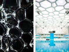 Biomimética: Diseño inspirado en la naturaleza