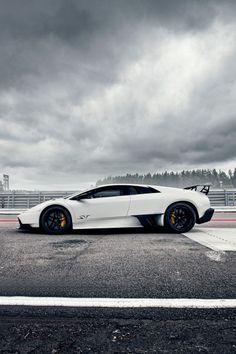 Visit The MACHINE Shop Café... ❤ The Best of Lamborghini... ❤ (The Murciélago Super Veloce)