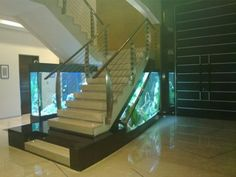 Aquarium Photos in Decoration are extremely useful for people who want to decorate with aquariums, because the models serve as inspiration when choosing the Aquarium Photos, Home Aquarium, Aquarium Maintenance, Acrylic Tube, Tropical Fish Aquarium, Hiding Places, Water Quality, Freshwater Aquarium, New Hobbies