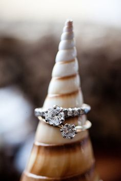 rings, perfect picture for a beach themed wedding