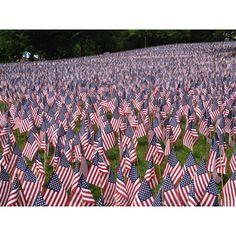Memorial day… per ricordare chi è morto combattendo per la patria