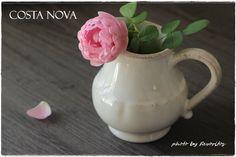COSTA NOVA(コスタノバ)   IMPRESSIONS(インプレッション) クリーマー