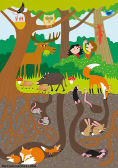 Kleuter puzzel met als thema onder en boven in het bos. Wooden puzzle for toddlers of a forest with all kinds of animals above and beneath the ground. Fox, mous, rabbit, owl etc. designed for Educo. Drawing For Kids, Art For Kids, Crafts For Kids, Preschool Learning Activities, Little Elephant, Autumn Crafts, Forest School, Science For Kids, Elementary Art