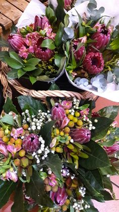 ICYMI - We supply bunches as well as single stems to Martin's in Diep River, and Oakhurst in Kenilworth. The benefit of buying flowers from a local stockist is that you're guaranteed fresh, quality flowers. Buy Flowers, Stems, Benefit, Succulents, Floral Wreath, Wreaths, River, Fresh, Plants