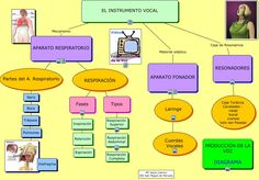 Primary Music, Music For Kids, Cello, Musicals, Map, Infographics, Google, Books, Flute