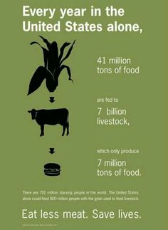 Sustainability Poster by Laura Laws, via Behance makes you think. Vegan Facts, Vegan Memes, Vegan Quotes, Why Vegan, Vegan Raw, Think, Thats The Way, How To Eat Less, Save The Planet