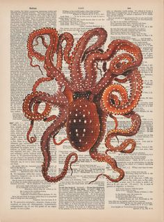 Octopus Vintage Dictionary Page Art Print from Scientific Illustration - Digital Collage - Wall Art - Geekery - Antique Book Page Art 24 x 36