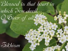 Blessed is that heart in which You dwell, O Giver of all. ||1||  Sikhism Source:http://holy-writings.com/index.php?a=RESULT=/en/Sikhs/Shri%20Guru%20Granth%20Sahib/Section%20%206%20-%20Raag%20Maajh.txt=His%20mercy=0=1#phrase-0   Photo by: Love is the Secret