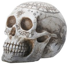 """Etched with the symbols of astrology, this replica skull has been hand painted for a natural bone finish. Made of cold cast resin. Hand painted. L: 7.75"""" x W: 5.25"""" x H: 5.5"""" More"""