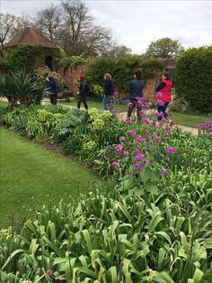 Back Gardens, Plants, Plant, Planets