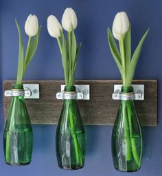 Perrier bottle bud vases look pretty against the wall. #diy #organization