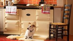 So much more than a cooker, Julie Harding lifts the hot plate on the Aga - the heart-warming kitchen feature no country house should be without. Traditional British Kitchens, Country Life, Country Style, Mary Berry, Plate Racks, Aga, Berries, Jack Russells, Labradors