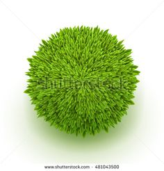 Grass sphere on a white background. Circle of fresh grass. Abstract grass ball with shadow.