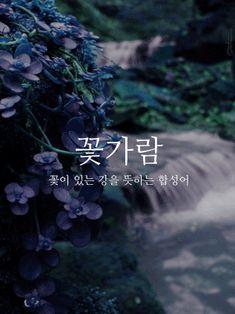 이쁜 우리말들 짤모음 Famous Quotes, Best Quotes, South Korea Language, Wow Words, Korean Quotes, Korean Words, Message Quotes, Learn Korean, Typography