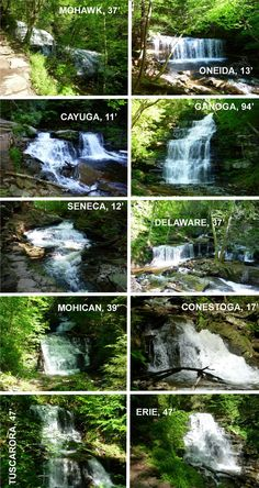 Ricketts Glen, Falls Trail <3 - Beautiful waterfalls near my home in northeastern Pennsylvania.