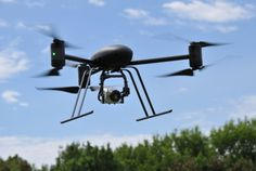 DRONES more commonly associated with the war on terror are to patrol the skies over Scotland in a bid to eradicate diseases that threaten to wipe out swathes of forest.