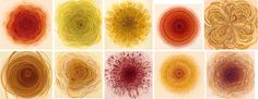 Brendan Monroe : Paintings : Flowers of Repetitive Motion