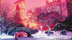 A snow-filled Central Park in New York City at Christmas time. #NYCLove