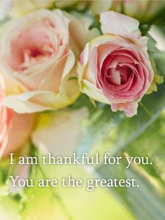 You are the Greatest - Thank You Card: Our friends and family are some of our greatest treasures. If you want to let your loved ones know how much you love them and how grateful you are for them, send this beautiful Thank You card! The lovely flowers are a great way to show how thankful you are and how much you care about them. Send it today!