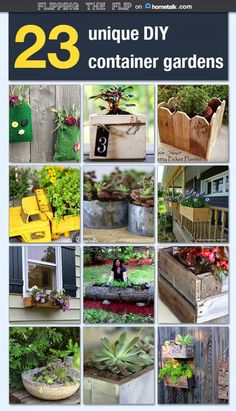 Great budget friendly DIY ideas for container gardens from Flipping the Flip! Check it out and make your plans today!