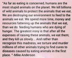 I totally agree people who eat meat or are in the meat industry are the most stupid things in this world! Us vegans and vegetarians are actually smart and PAY ATTENTION and CARE for our world instead of destroying it! Vegan Facts, Vegan Memes, Vegan Quotes, Vegan Humor, Why Vegan, Vegan Vegetarian, Vegan Food, Vegetarian Quotes, Going Vegetarian