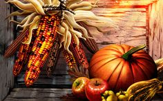 thanksgiving photos free - Google Search