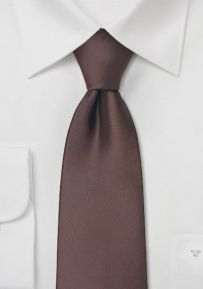 Solid Mens Tie in Chocolate Brown