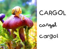 Catalan Language, Forest Animals, Conte, Art Activities, Christmas Ornaments, Holiday Decor, Projects, Fun, Flashcard