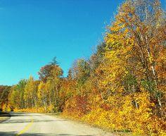 Little Hawk Lake Road, #Haliburton #Ontario