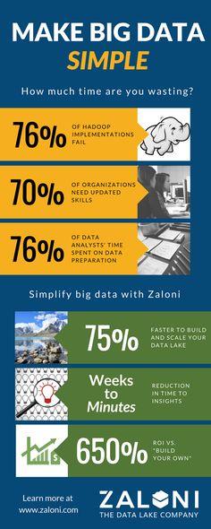 Make big data simple with Zaloni