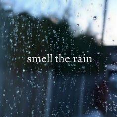 3 thunderstorms, rainy night quotes, rain words, rainy day images, rainny d Rain Storm, No Rain, Rain Fall, Summer Rain, Sound Of Rain, Singing In The Rain, Rainy Night, Rainy Days, Rainy Morning