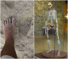Analysis of 1.5 million year old footprint suggest the Homo Erectus walked like modern humans
