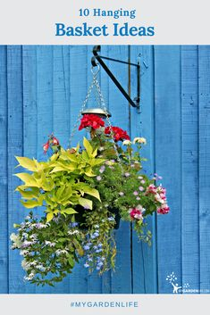 Hanging baskets are the workhorses of your container or deck garden, providing fragrance, color, privacy, and more. Check here for 10 great DIY ideas for making your own hanging basket today.