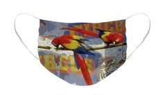 #facemask #newnormal #reusablemask #facemaskforartist #facemaskpattern  #parrotsfacemask #colorfulfacemask #colourfulfacemask #facemasksuniquestyles #artisticfacemasks #facemaskfashion #mask  #protectyourself #protectyourfamily #polyester #reusable #washable Parrot Perch, Circus Poster, Unique Faces, Masks Art, Masks For Sale, Mask Design, Basic Colors, Color Show, Face Masks