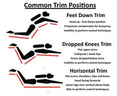 The most common trim problems experienced by divers and how to resolve them. How to improve your trim when scuba diving.and not just with trim weights. Scuba Diving Quotes, Best Scuba Diving, Scuba Diving Gear, Cave Diving, Sea Diving, Scuba Diving Certification, Diver Down, Scuba Diving Equipment, Diving Course