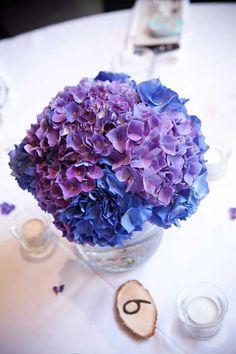 Purple hydrangea wedding centerpieces....replace blue color with green to go with my color theme.