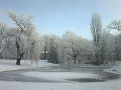 Winter in Źródliska Park. Łódź, Poland.