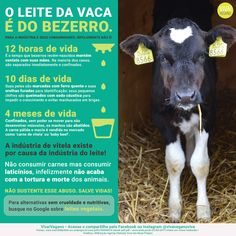 #govegan #vegan #vegano #veganismo #bezerro #leite #vaca Vegan Quotes, Why Vegan, Vegan Lifestyle, Worlds Of Fun, Going Vegan, Veggies, Pets, Words, Animals