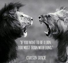 A lion. Check out humblehunger.com #Motivation #Inspiration #Success #Quotes #selfimprovement