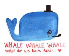 whale whale whale!