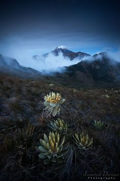 VOLCAN DEL TOLIMA, COLOMBIA | Volcan de Tolima by Jonathan Duriaux, via 500px