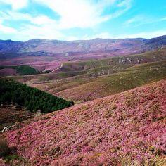 Montesinho - Bragança Grand Canyon, Vineyard, Nature, Travel, Outdoor, Places, Natural Playgrounds, Outdoors, Naturaleza