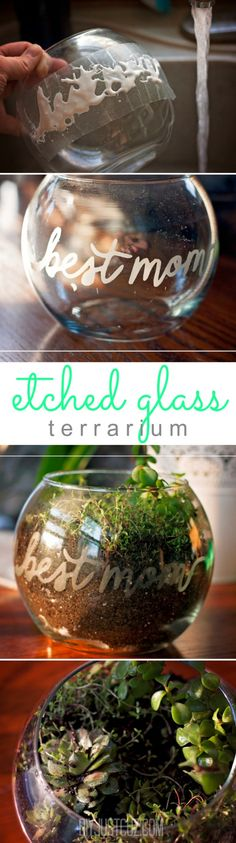Handmade, diy gifts are the best! Here's an etched glass terrarium made using the Silhouette Cameo for Mother's Day. @diyjustcuz