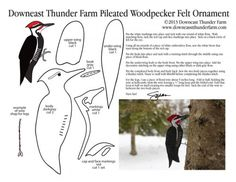 felt birds The Pileated Woodpecker, distinctive for its wild bright red cap, is possibly one of the most iconic birds thanks to the Woody Woodpecker cartoons. This bird, with its bold markings, is a perfect p Bird Crafts, Animal Crafts, Felt Crafts, Felt Patterns, Bird Patterns, Robin Vogel, Bird Template, Owl Templates, Crown Template
