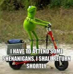 I have to attend some shenanigans, I shall return shortly. -- How I feel about most work functions. wait, who am I kidding, ALL work functions. Funny Kermit Memes, Funny Video Memes, Stupid Funny Memes, Funny Cartoons, Funny Quotes, Funny Stuff, Funny Shit, Life Quotes, Funny Images