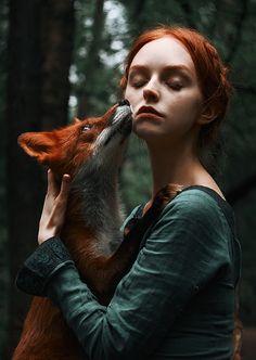 Гипнотические портреты рыжеволосых красавиц идиких лис взимнем лесу