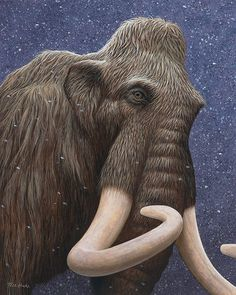 Woolly Mammoth by Tell Hicks Prehistoric World, Prehistoric Creatures, Mythical Creatures, Extinct Animals, Rare Animals, North American Animals, Chest Piece Tattoos, The Wooly, Peacock Art