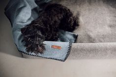 Manta para perros de lana de oveja merino australiana. En espiga, dos opciones de color: naranja y azul. Bordes rematados con un cosido marrón tipo vainica Color Naranja, Blankets, Dog Blanket, Grey Colors, Bed Covers, Fabrics, Blanket, Cover, Comforters