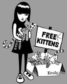 free kittens